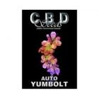 CBDS001801 - AUTO YUMBOLT 1 SEME FEMM CBD SEEDS