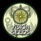 VS00105 - AK 49 5 SEMI FEMM VISION SEEDS