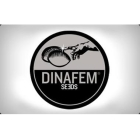 DF3117 - AMNESIA KUSH 1 SEME FEMM DINAFEM