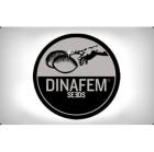DF3048 - BUBBA KUSH 1 SEME FEMM DINAFEM